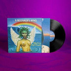 A Beginner's Mind - LP / Sufjan Stevens & Angelo De Augustine / 2021