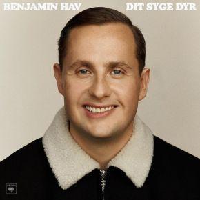 Dit Syge Dyr - LP / Benjamin Hav / 2020