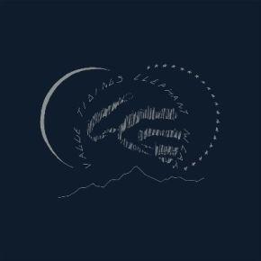 Vague Tidings - LP / Elephant Micah / 2021