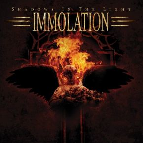 Shadows In The Light - LP (oarnge vinyl) / Immolation / 2014