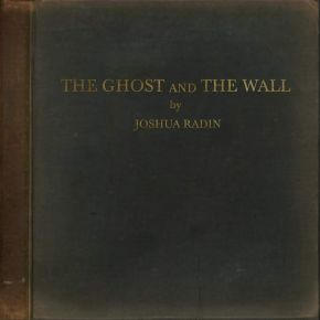 The Ghost and the Wall - LP / Joshua Radin / 2021