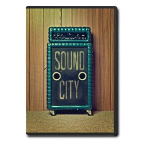Sound City - Real To Reel - dvd / 2012