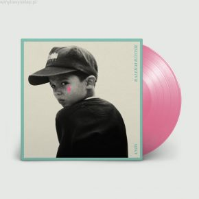 Andy - LP (Rosa Pink Vinyl) / Raleigh Ritchie / 2021