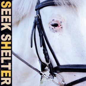 Seek Shelter - CD / Iceage / 2021