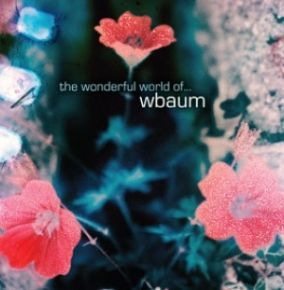 The Wonderful World Of… - LP / wbaum / 2009