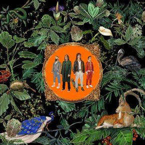 Amazing Things - CD / Don Broco / 2021