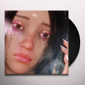 I'll Never Give Up On Love Until I Can Put A Name On It - LP / Las Aves / 2019