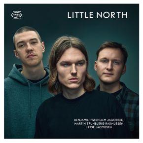 Little North - LP (Stød på hjørne) / Little North / 2020