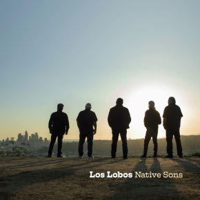 Native Sons - CD / Los Lobos / 2021