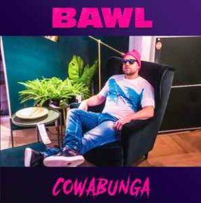 """Cowabunga - 12"""" Vinyl EP / Bawl / 2018"""