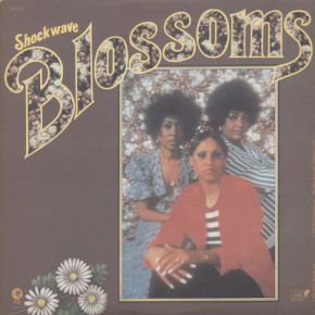 Shockwave - LP / The Blossoms / 1972
