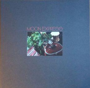 "Prophetic Spirit - LP+7"" (RSD 2019 Vinyl) / Moon Express / 2019"