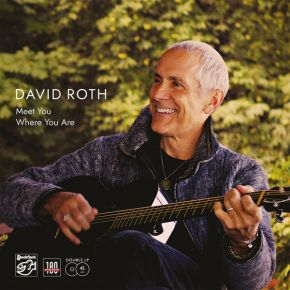 Meet You Where You Are - 2LP / David Roth / 2020