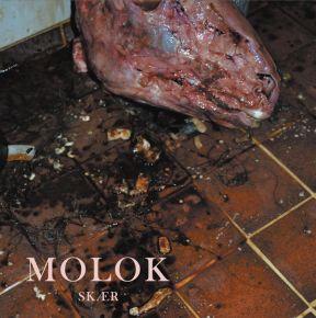 Skær - LP / MOLOK / 2021