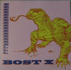 Æææææææææææææææælll - LP / Bost X / 2013