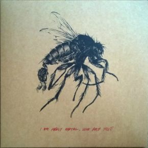 I Am Heavy Metal, Who Are You - LP / Omar / 2014