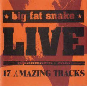 Live - 17 Amazing Tracks - CD+DVD / Big Fat Snake / 2001