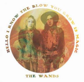 """Hello I Know The Blow You Grow Is Magic - 10"""" Farvet vinyl / The Wands / 2012 / 2016"""