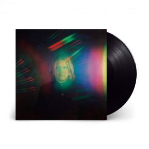 Harmonizer - LP / Ty Segall  / 2021