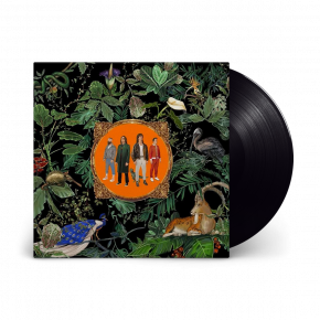 Amazing Things - LP / Don Broco / 2021