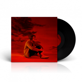 Divinely Uninspired To A Hellish Extent - LP / Lewis Capaldi / 2019