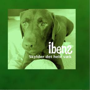 "Skylder Det Hele Væk - 7"" Grøn vinyl / Ibens / 2020"