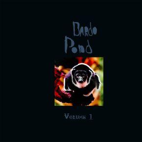 Volume 1 - LP (RSD 2021 Farvet Vinyl) / Bardo Pond / 2000/2021