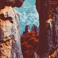 """Earthbound - 12"""" Vinyl EP / Wild Forest / 2017"""