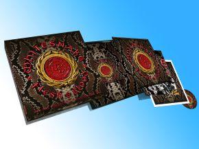 Flesh & Blood - 2LP+CD+DVD (Box Set) / Whitesnake / 2019
