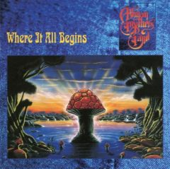 Where It All Begins - 2LP (Etched D-side) / The Allman Brothers Band / 1994 / 2015