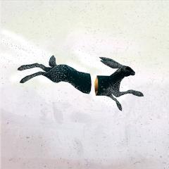 Morgenlysskær - LP / Fugleflugten / 2019