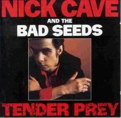 Tender Prey - CD / Nick Cave (& The Bad Seeds) / 2010
