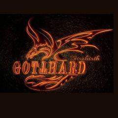 Firebirth - 2LP (brun vinyl) / Gotthard / 2012