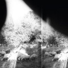 Asunder, Sweet And Other Distress - LP / Godspeed You! Black Emperor / 2015