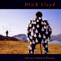 Delicate Sound Of Thunder - 2CD / Pink Floyd / 1988