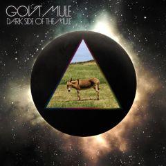 Dark Side Of The Mule - cd / Gov't Mule / 2014