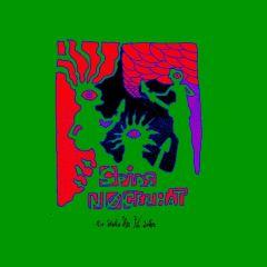 De sidste her på jorden - LP / Spids Nøgenhat / 2012