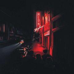 The Neon Skyline - LP / Andy Shauf / 2020