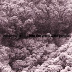 Into The Great Wide Yonder - LP / Trentemøller / 2010