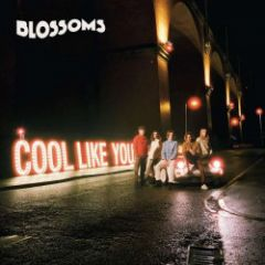 Cool Like You - LP / Blossoms / 2018