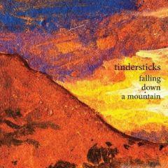 Falling Down A Mountain - cd / Tindersticks / 2010