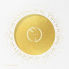 Skin - LP / Fribytterdrømme / 2019