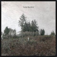 Saint Bartlett - LP / Damien Jurado / 2010