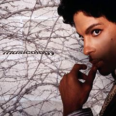 Musicology - CD / Prince / 2004 / 2019