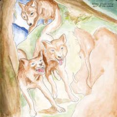 Wolf Of The Cosmos - LP / Bonnie Prince Billy / 2018