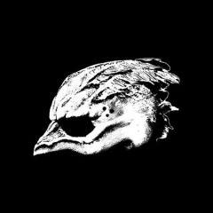 Legend of the Seagullmen - LP / Legend of the Seagullmen (Bandmedlemmer fra Tool, Mastodon m.fl.) / 2018