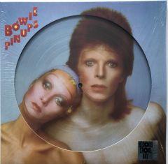 Pin Ups - LP (RSD 2019 Picture Disc) / David Bowie / 1973 / 2019