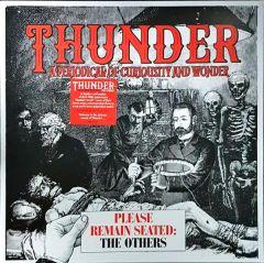 Please Remain Seated: The Others - LP (RSD 2019 Farvet Vinyl) / Thunder / 2019