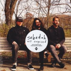 Act Surprised - LP (Hvid vinyl) / Sebadoh / 2019