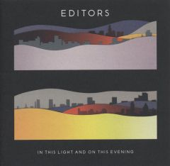 In This Light And On This Evening - LP / Editors / 2009 / 2018
